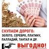 Евгений Штоль