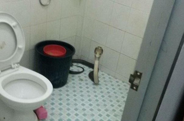 poznakomilis-i-trahnulis-v-tualete
